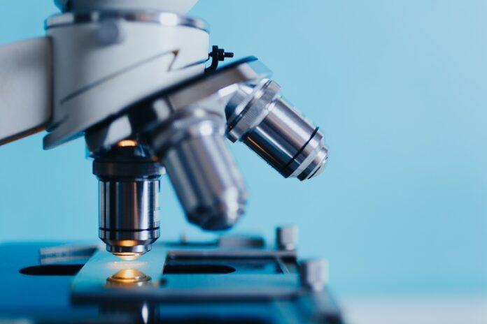sclerosi multipla ricerca